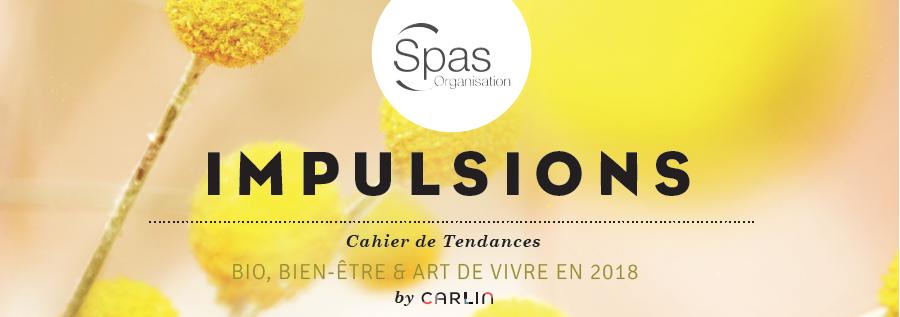 Impulsions SPAS Organisation